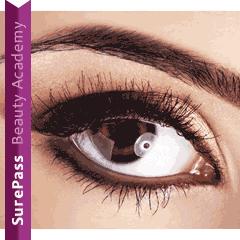 View Eyelash / Eyebrow Courses