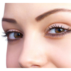 Eyebrow Extensions Beauty Course