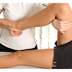Sports Massage Therapy Course