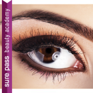 HI HD Eye Brows Training Course