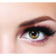 Volume Lash Course